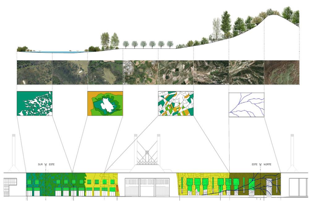Detalle de la distribución de las plantas en el edificio según el ecosistema originario