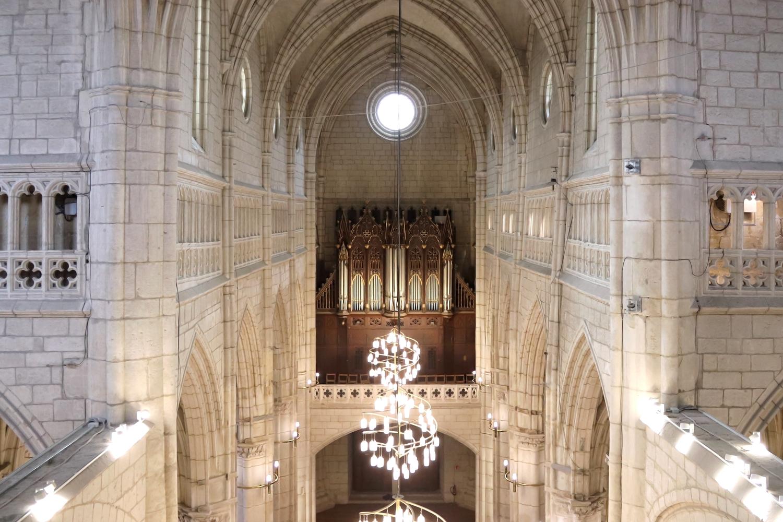 iluminacion-catedral-santa-maria-techos